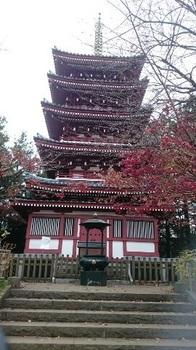 歩こう会 本土寺 五重塔 1512874585872.jpg 1 17-12.8.jpg