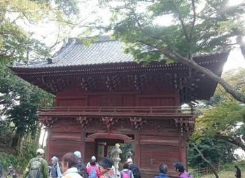 歩こう会「悲しい伝説を訪ねて」 弘法寺 17-11.10 1510364055997.jpg